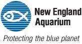 Full STEAM Ahead: Ocean Adventures Spring 2018