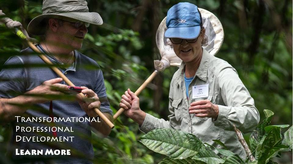 $1250 Scholarships For Amazon Rainforest PD Workshop
