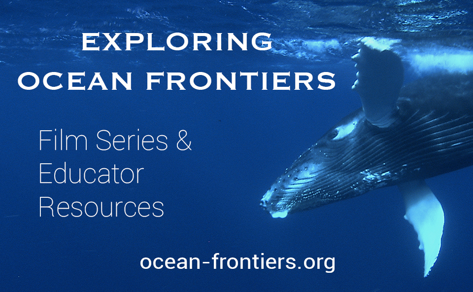 New Ocean Educator Resources – Real-life Science & Data